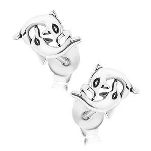 Stříbrné náušnice 925, ohýbající se delfíni, puzetové zapínání