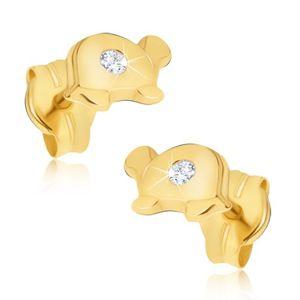 Zlaté náušnice 585 - malé lesklé želvy s čirým kamínkem na krunýři